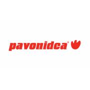 Pavonidea